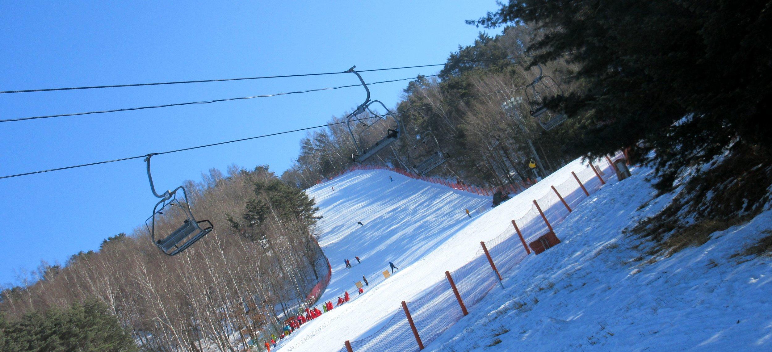 ski7.jpg