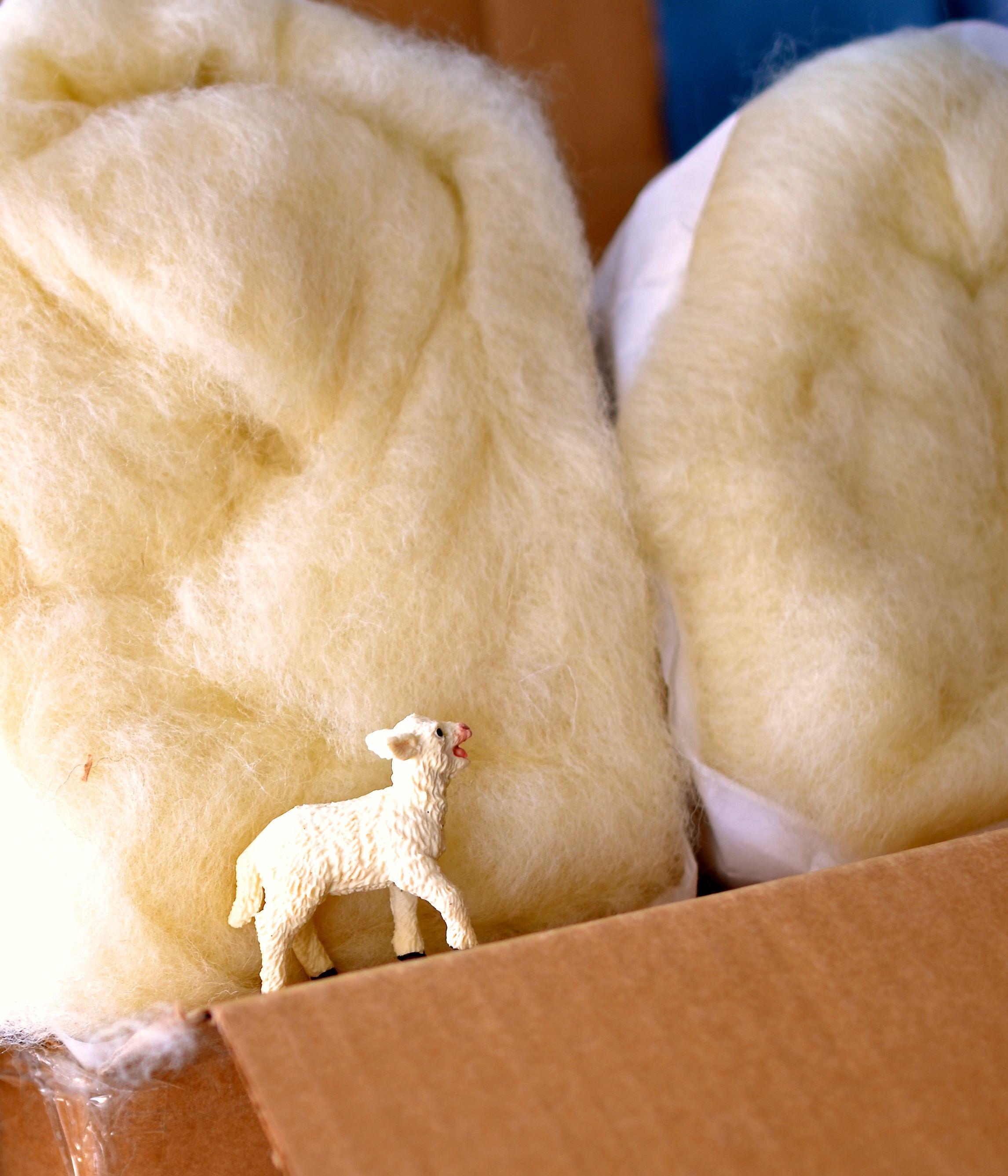 wool 21.jpg