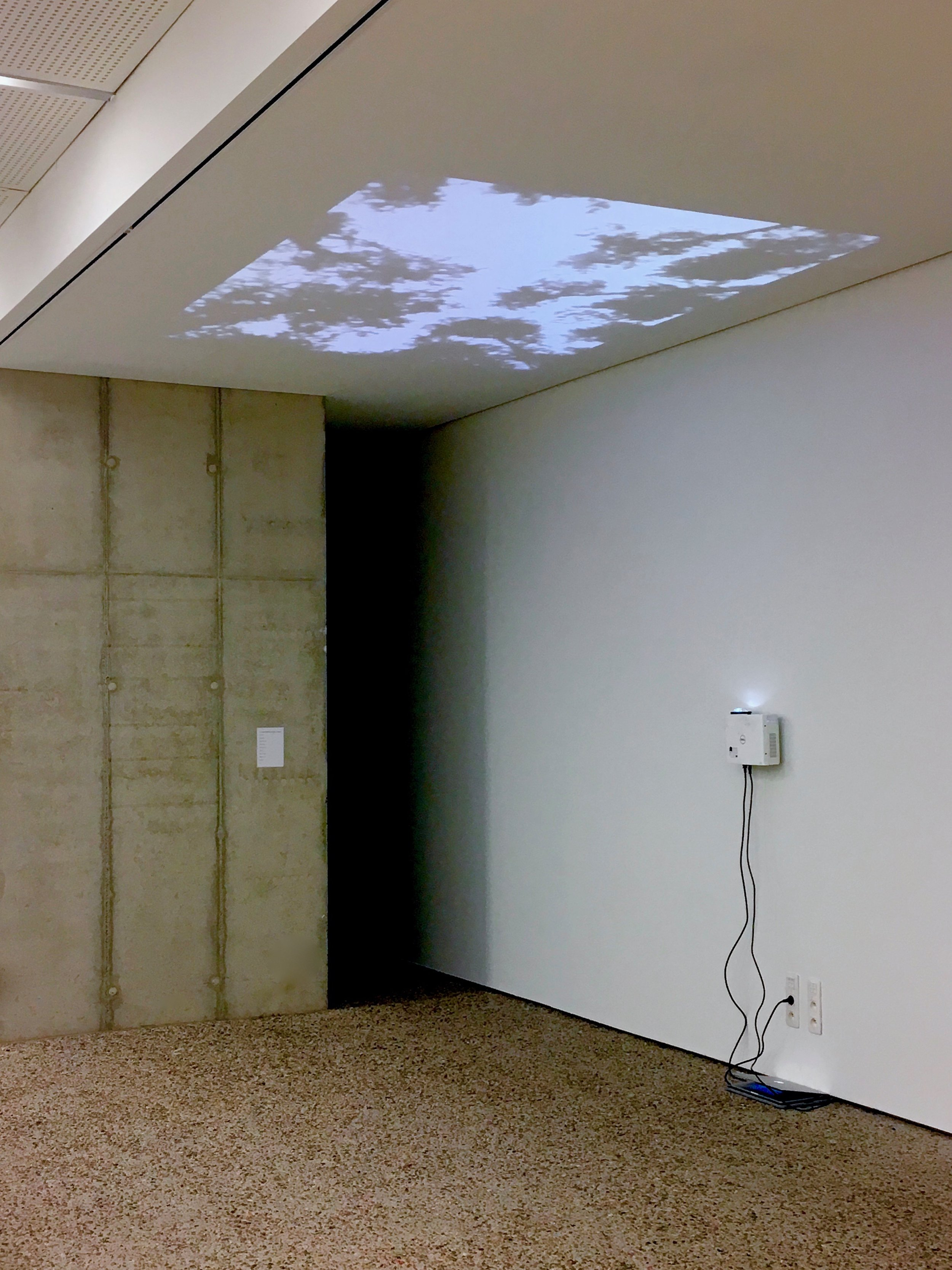 Two Hundred and Sixty-nine Steps, Looking Up (installation view)