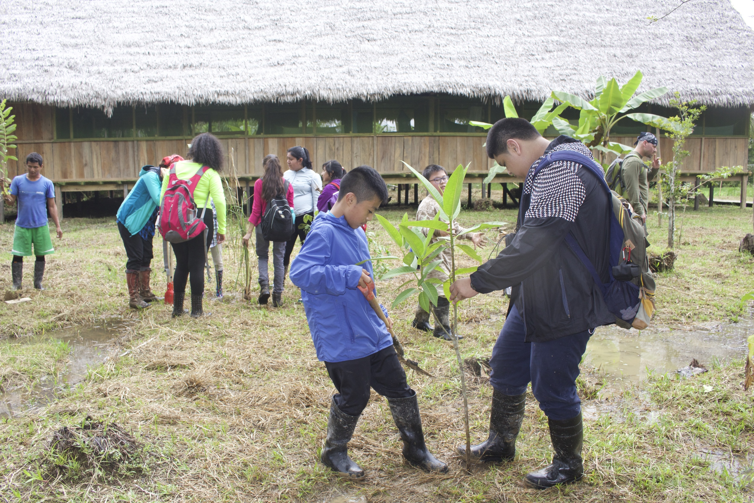 Digging holes for the fruit trees and medicinal plants