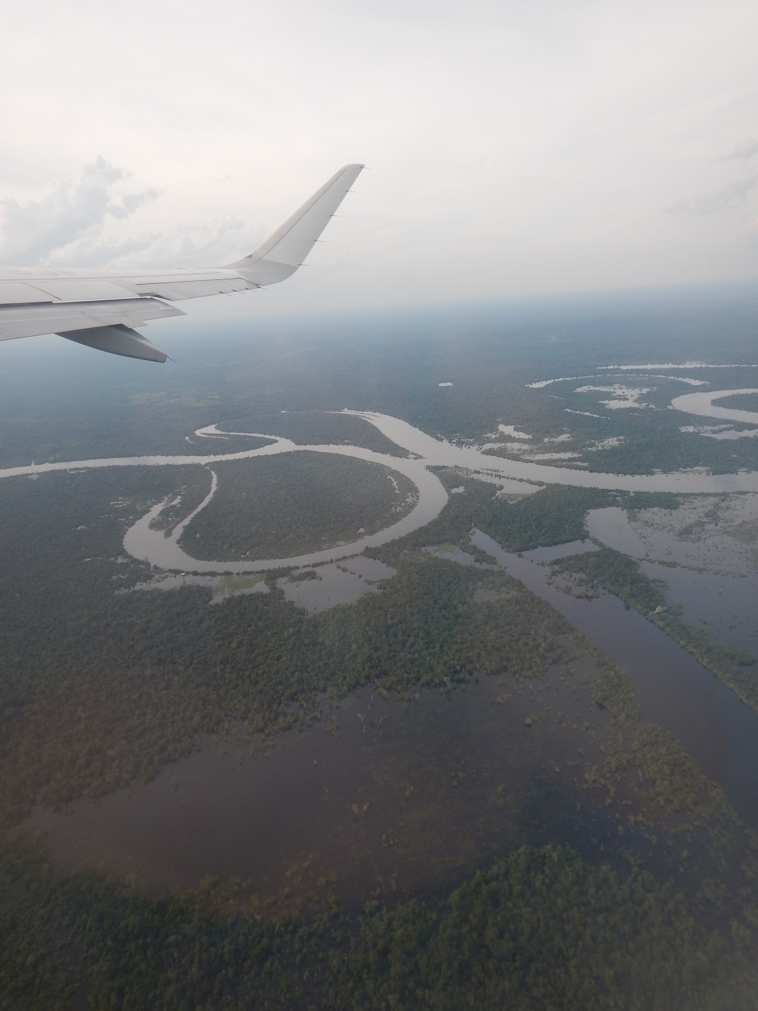 The Amazon Rainforest as viewed from the airplane