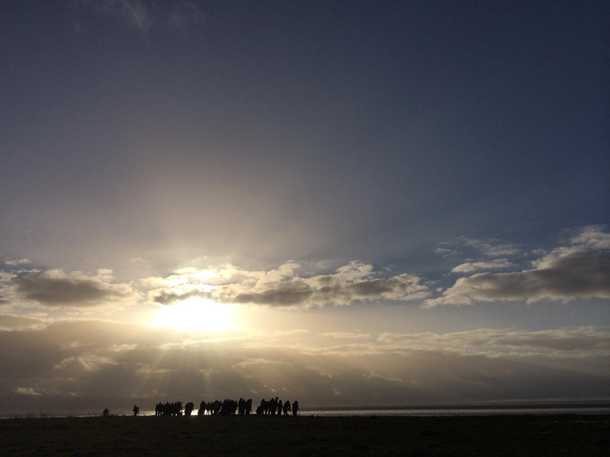 Ivory Gull watchers at Patrington Haven