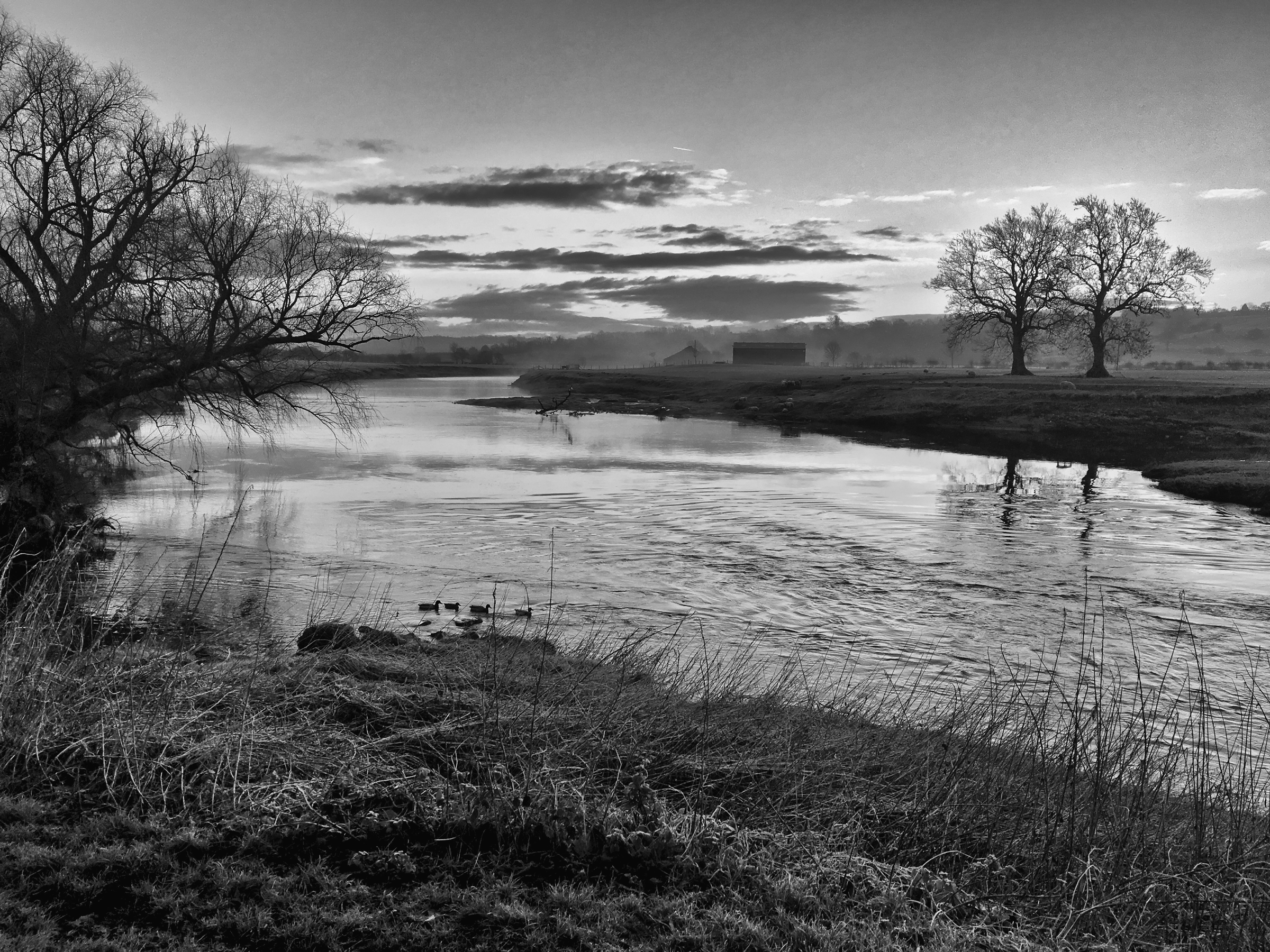 River_Ribble_at_Ribchester.jpg
