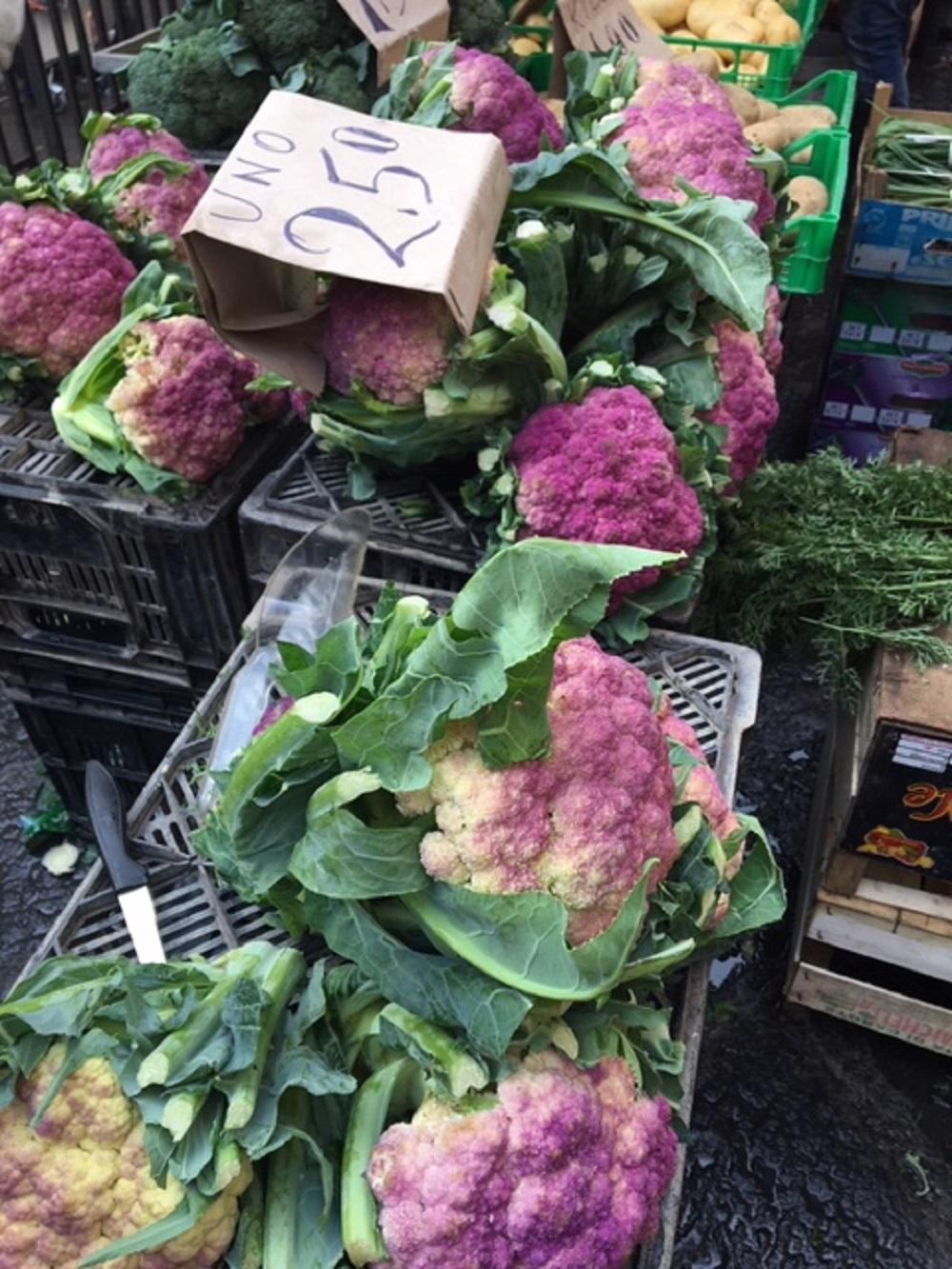 markettour2.jpg
