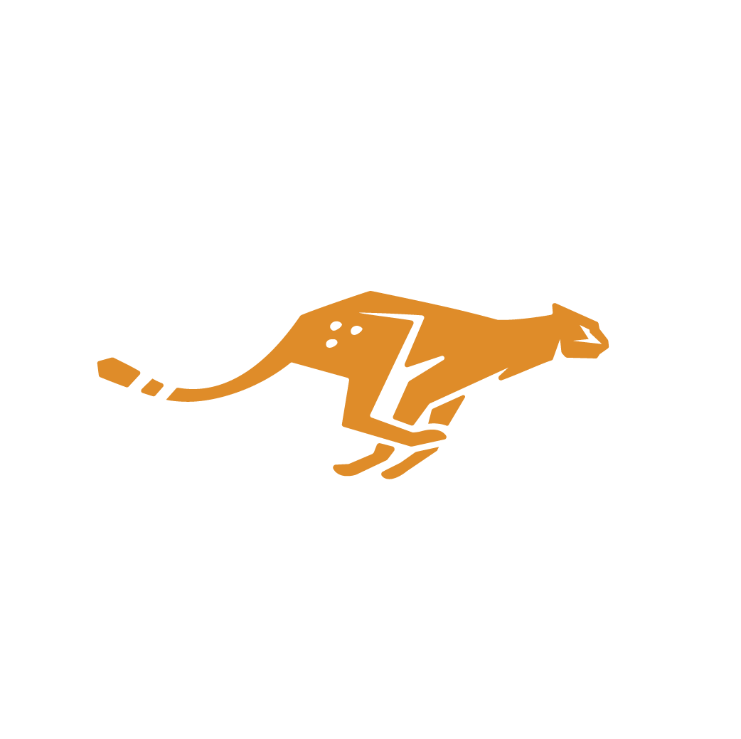 jarrett_johnston_cheetah_logo_2-01.png