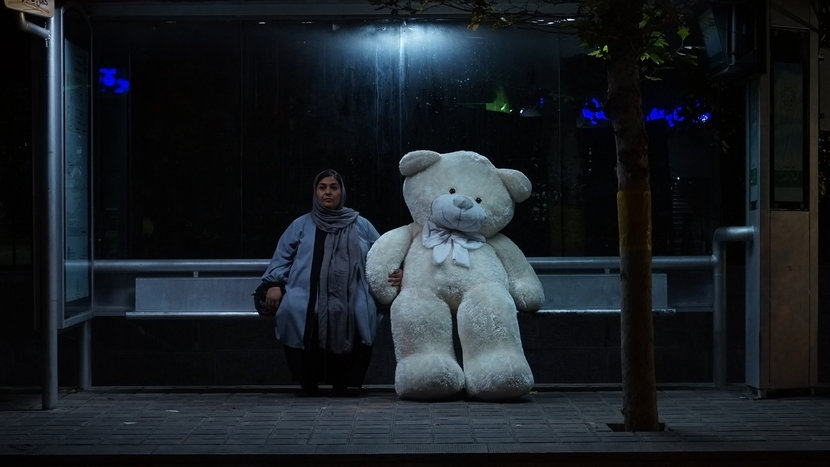 tehran-city-of-love-teddy-bear-01.jpg
