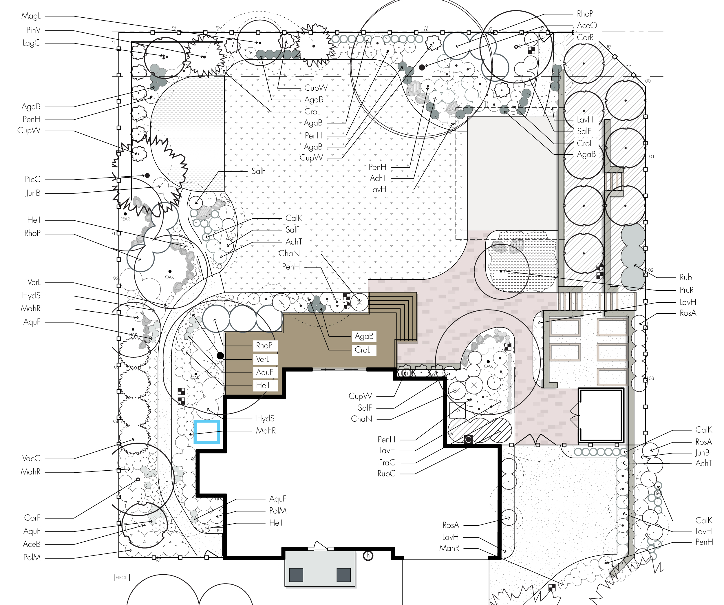 planting layout detailed design schematic example + residential + mixed  perennial garden + landscape architecture detail
