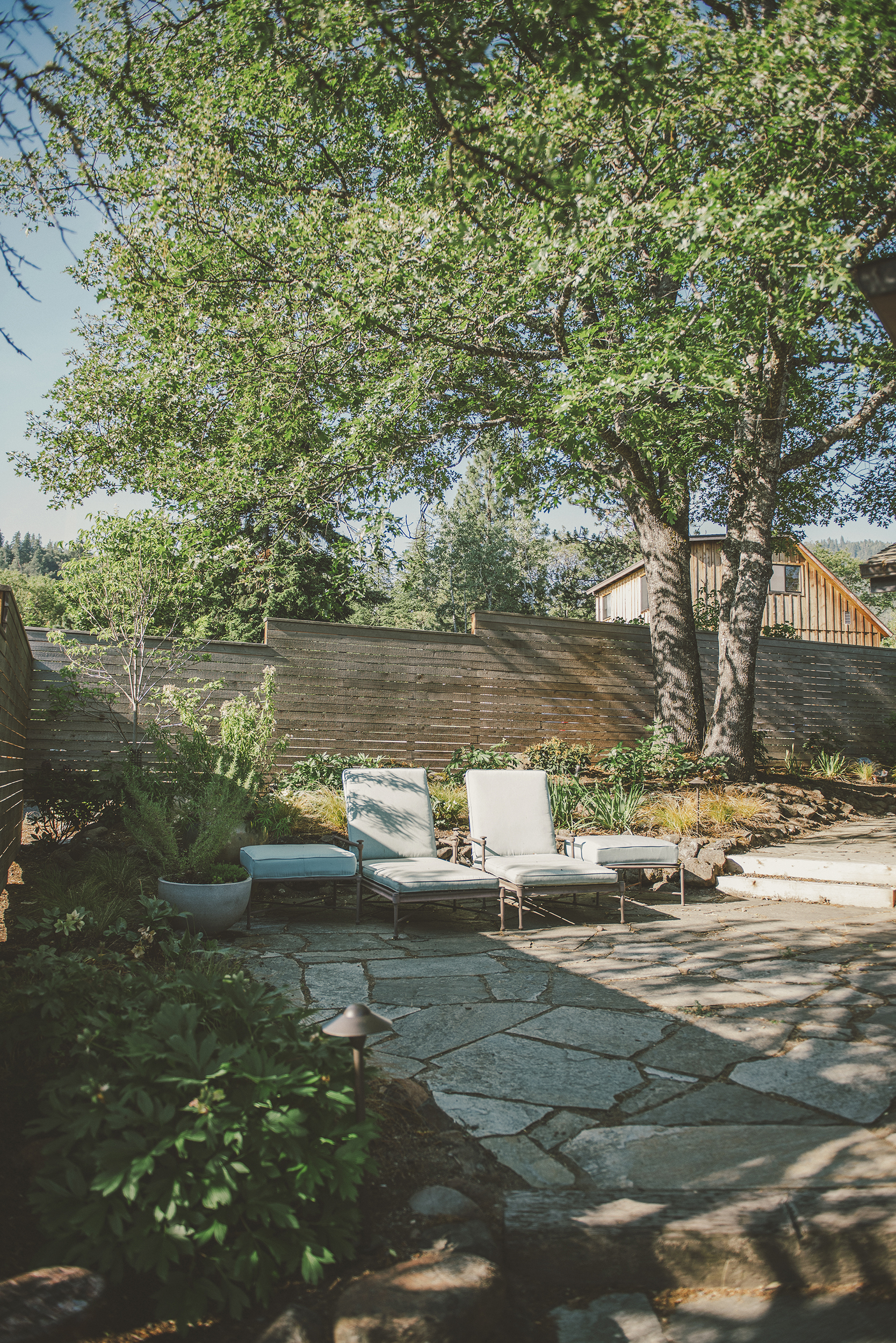 Flagstone Patio + Lounge Outdoor Furniture + Wood Panel Fence + Modern Native Plantings.jpg
