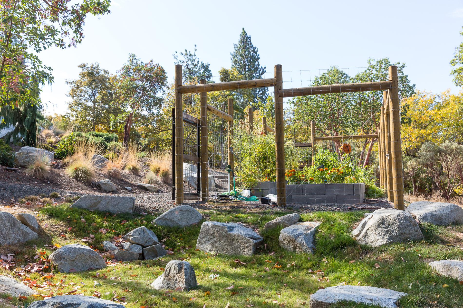 Deer Fencing + Vegetable Garden + Boulder Rain Garden