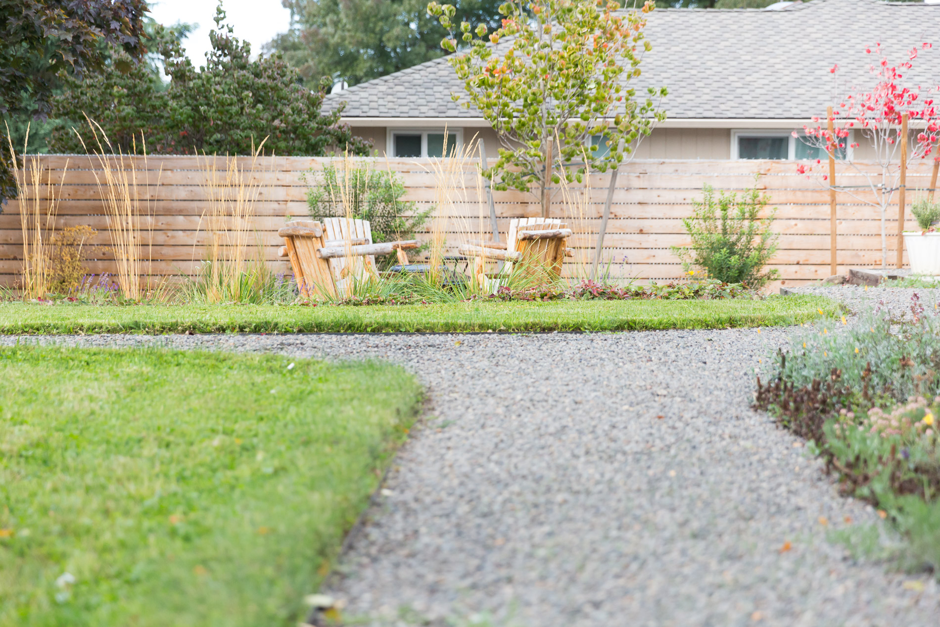 Steel-edged gravel path + eco-lawn