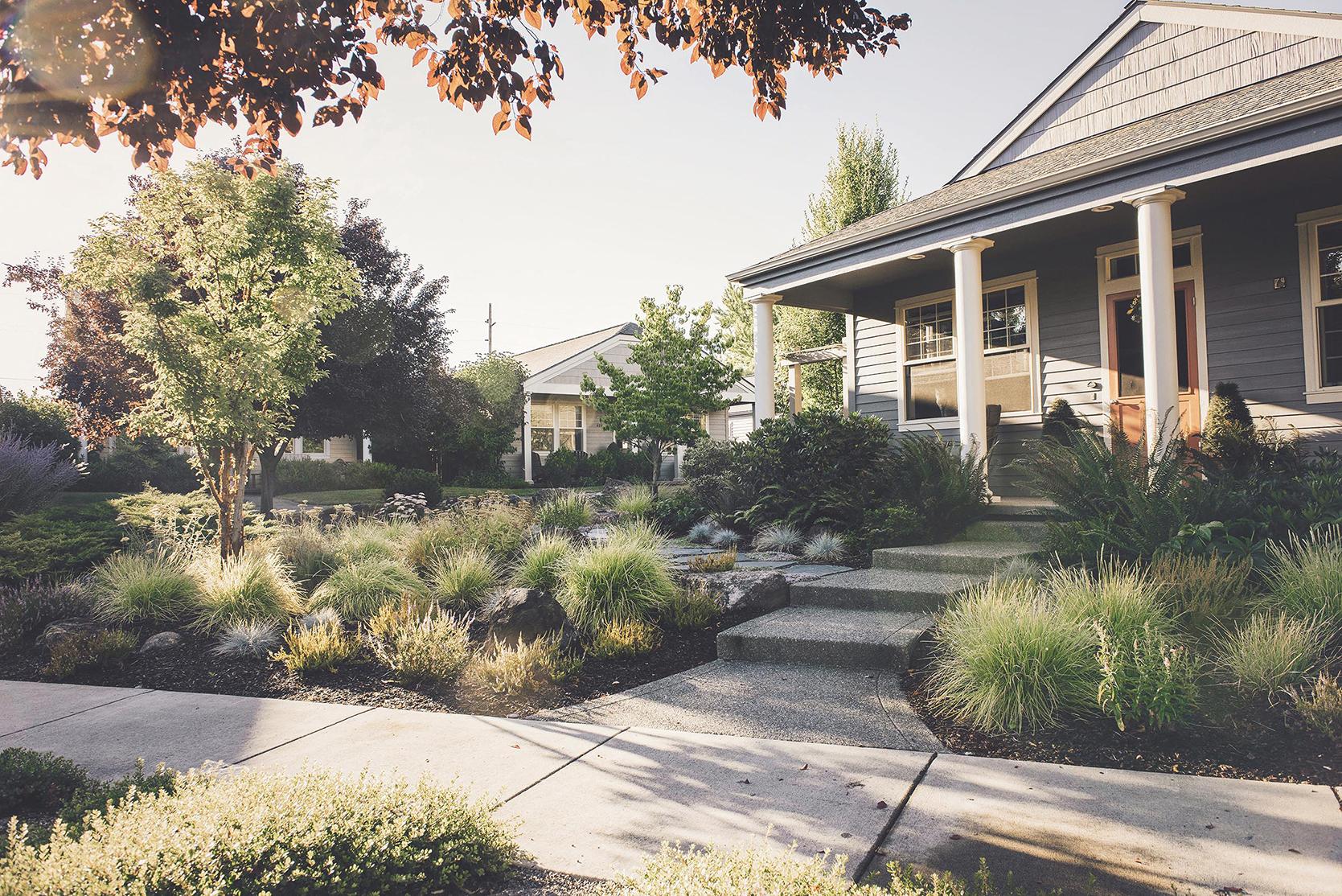 flagstone walkway + perennial + shrub low maintenance drought tolerant garden + smart irrigation