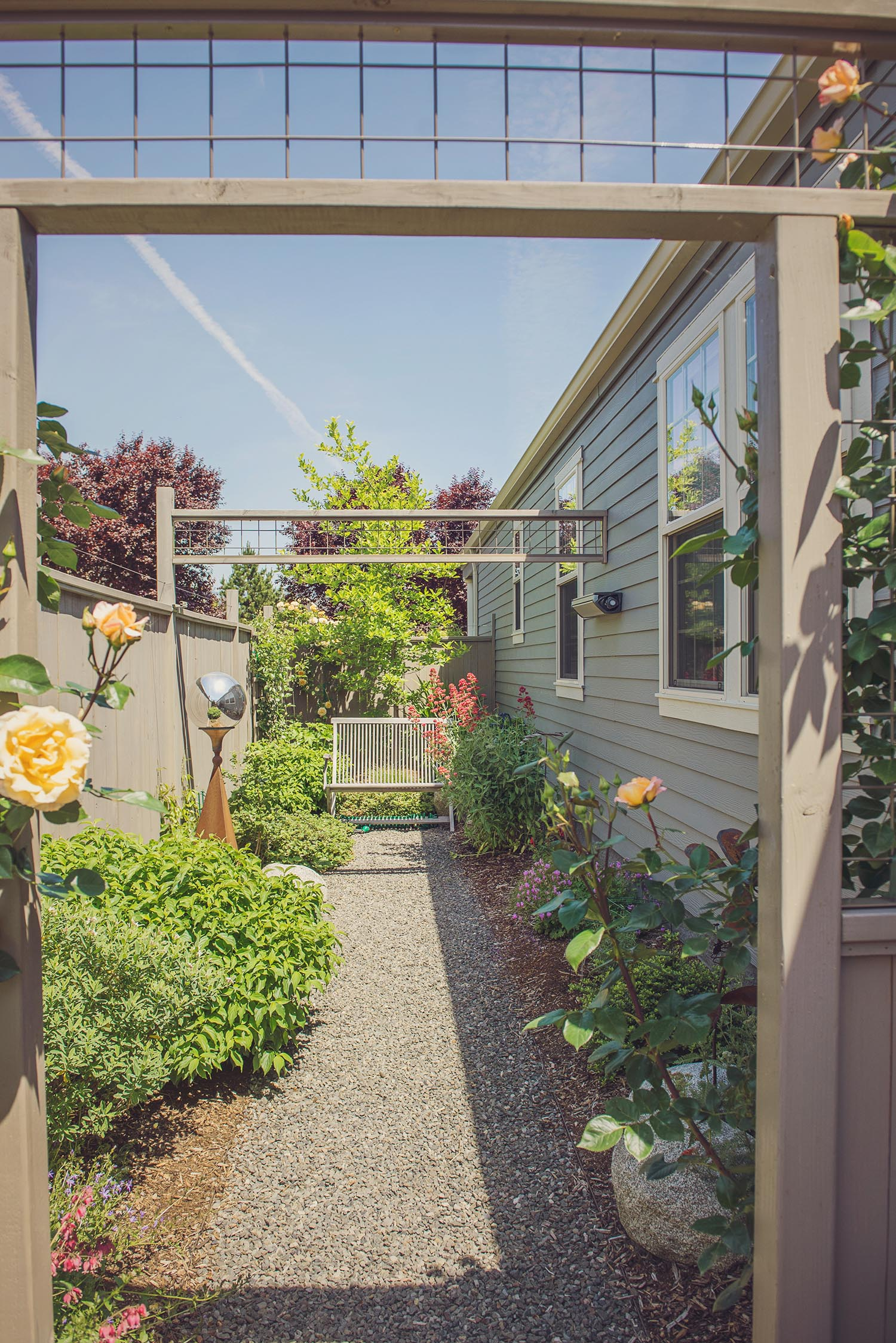 Crushed basalt pathway + perennial side garden + yellow rose trellis wood gate + steel wire trellis + granite boulders + bench seat + small space landscape design