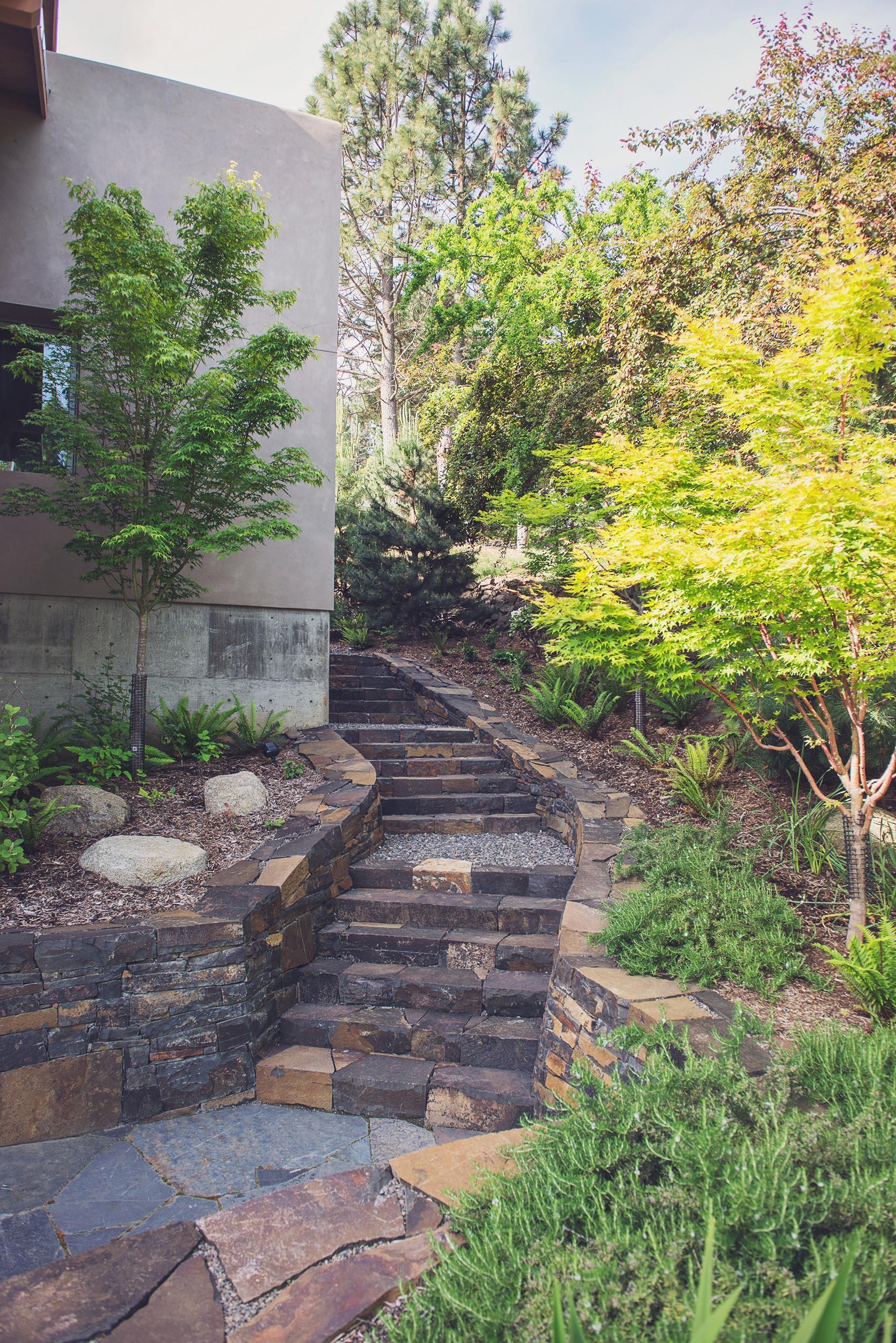 locally quarried stacked basalt stairs + flagstone patio + basalt retaining walls + modern landscape architecture + mountain maples + perennial gard