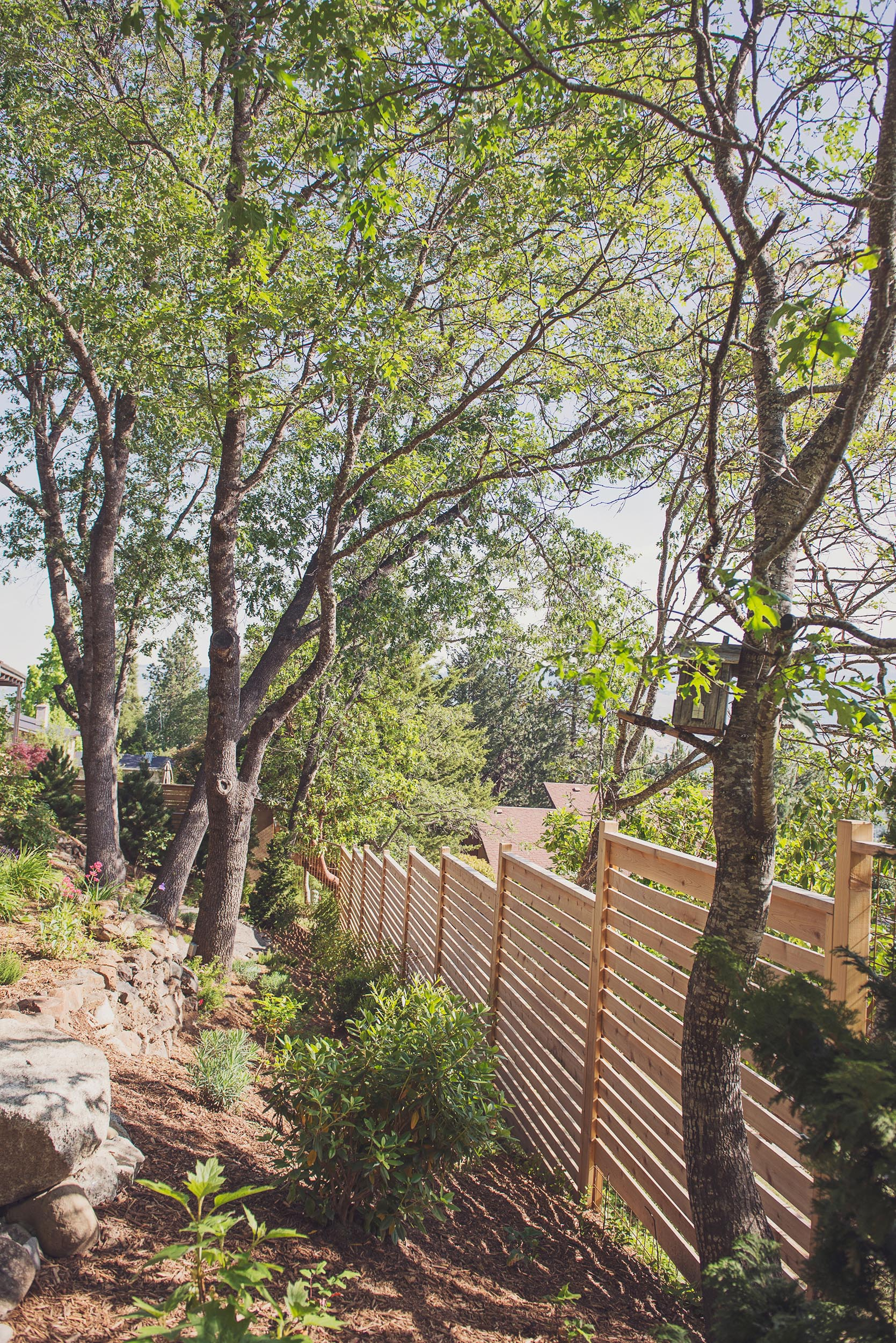 sloping backyard + slatted privacy fence + rhododendron + perennial flower garden