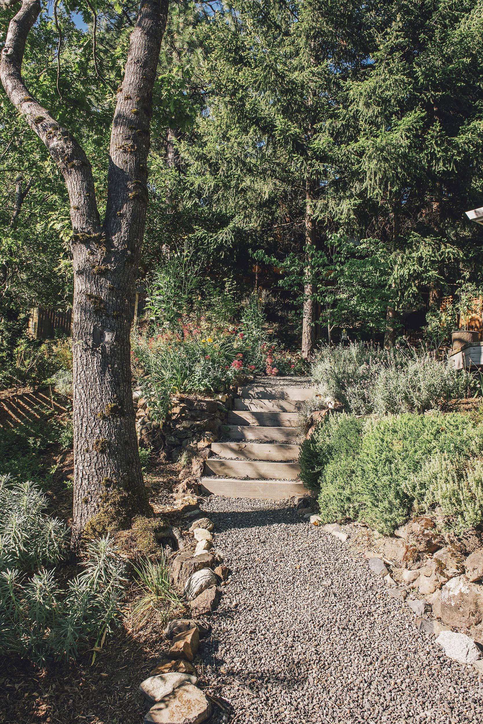 Gravel + Cobble Path + Woodland