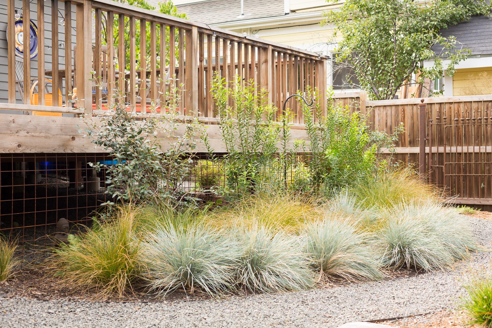 Gravel Path + Bunch Grass Deck Border