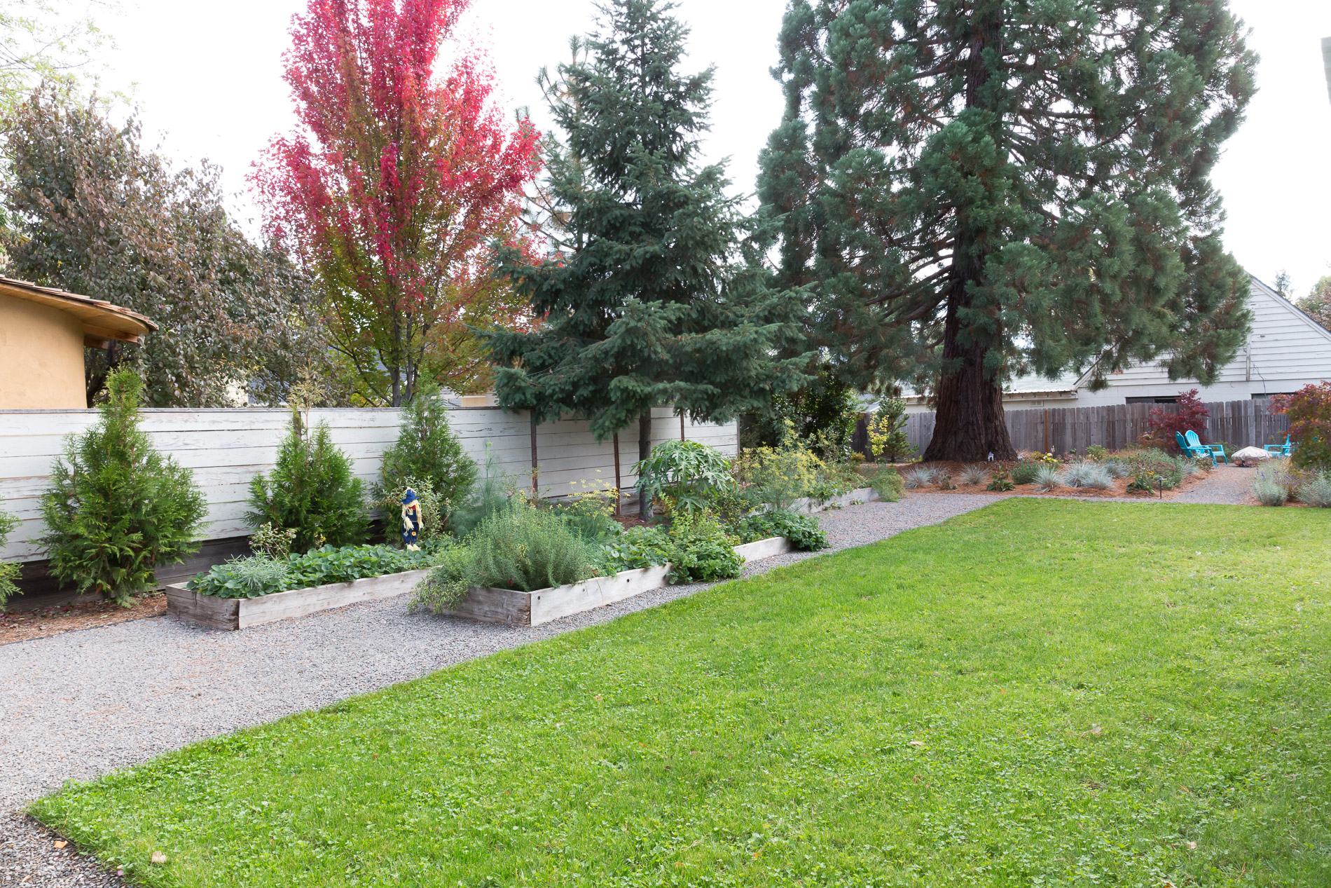 Open Eco-Lawn with Vegetable Raised Beds + Woodland Perennial Plantings