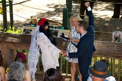 A wedding with added elephant at Perth Zoo!