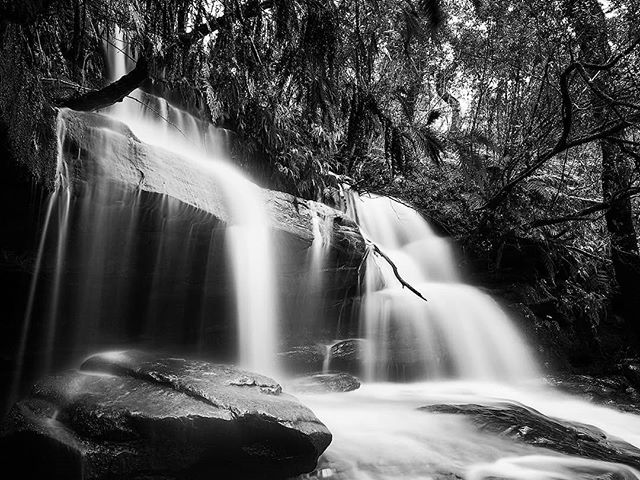 Getting down low to capture one of the side falls at #somersbyfalls It was very dark and had to make the exposure a little longer than normal. It did turn out quite well in the end. ----------------- Website: JasonBeaven.com ----------------- #monochromeaustralia #bnw_australia #monochromatic #bnw #bnwphotography #waterfalls #gosford #centralcoast #aussie_images