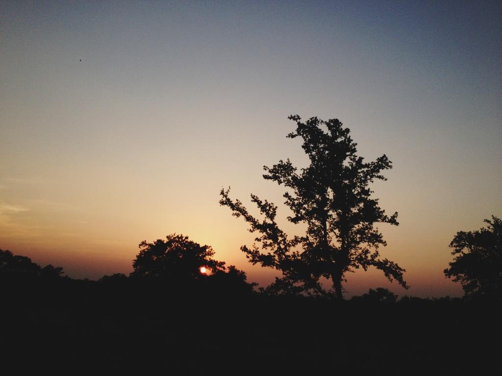 texas skyline sunset.JPG