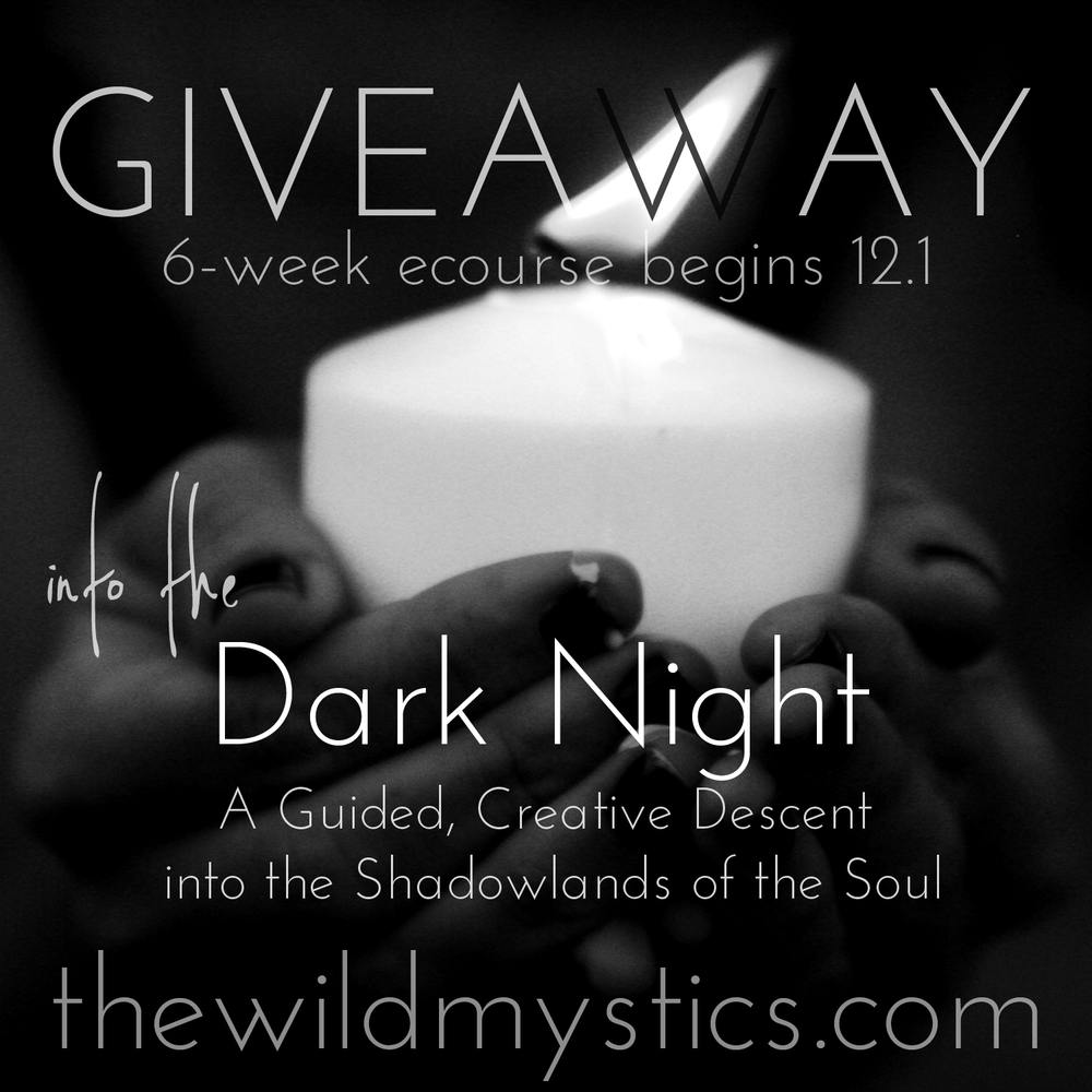 into the dark night giveaway.jpg
