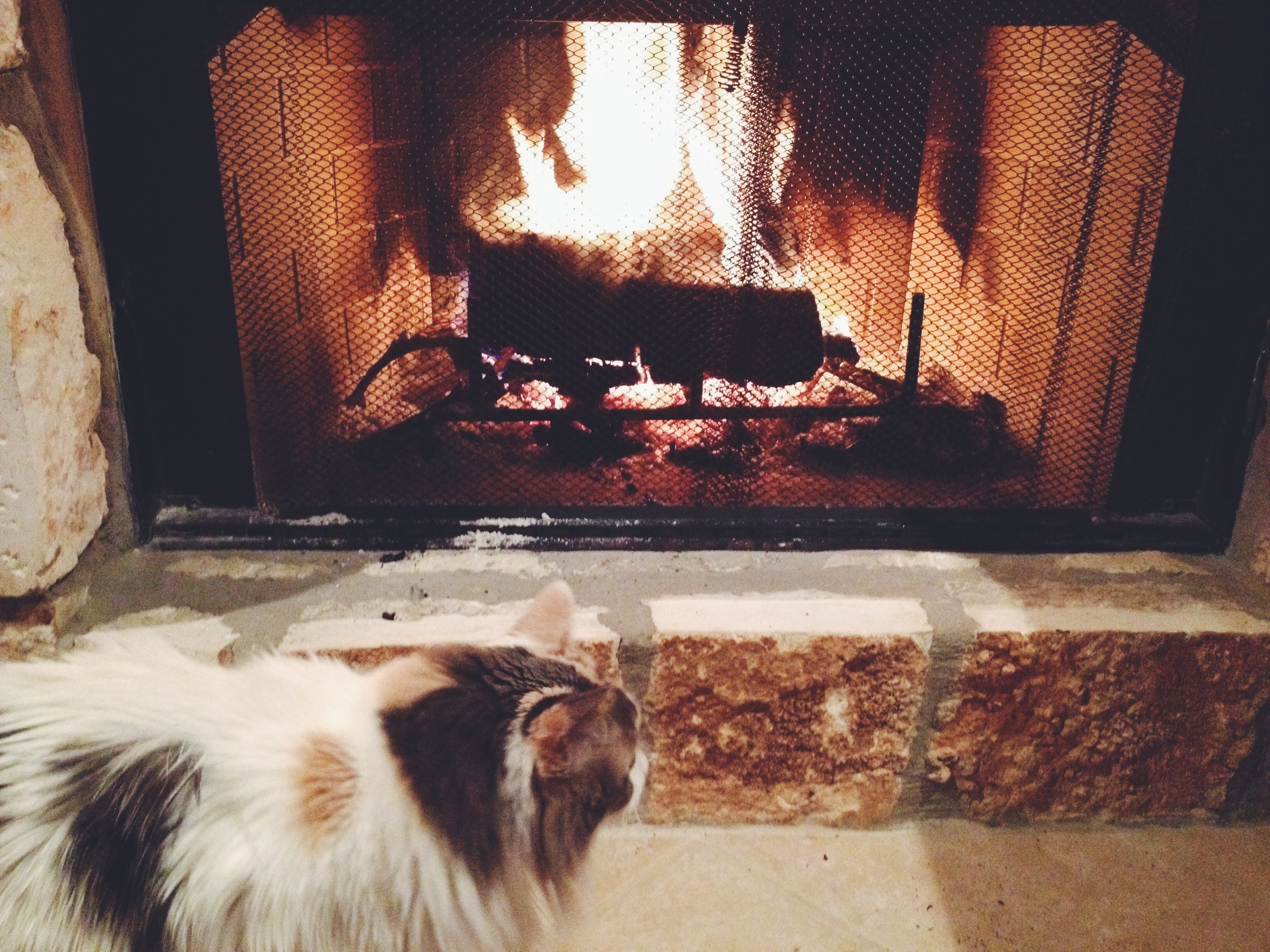 It got cold enough to have a few more fires in the fireplace...