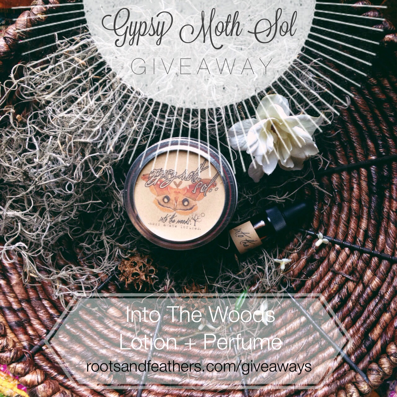Gypsy Moth Sol Giveaway via rootsandfeathers.com