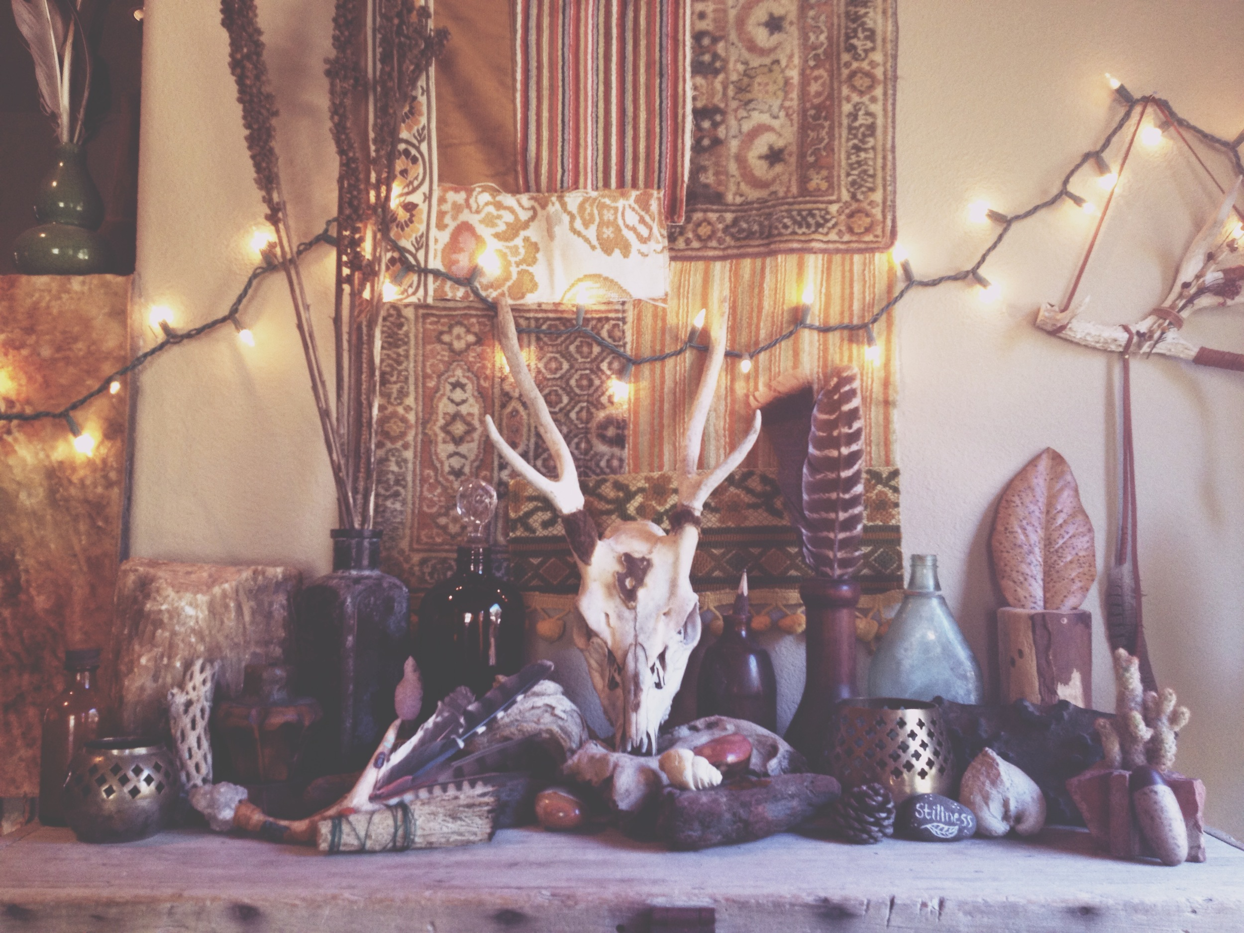 My new autumnal altar. James found me this amazing skull out on my parents property, so I felt it needed a proper place to be loved.