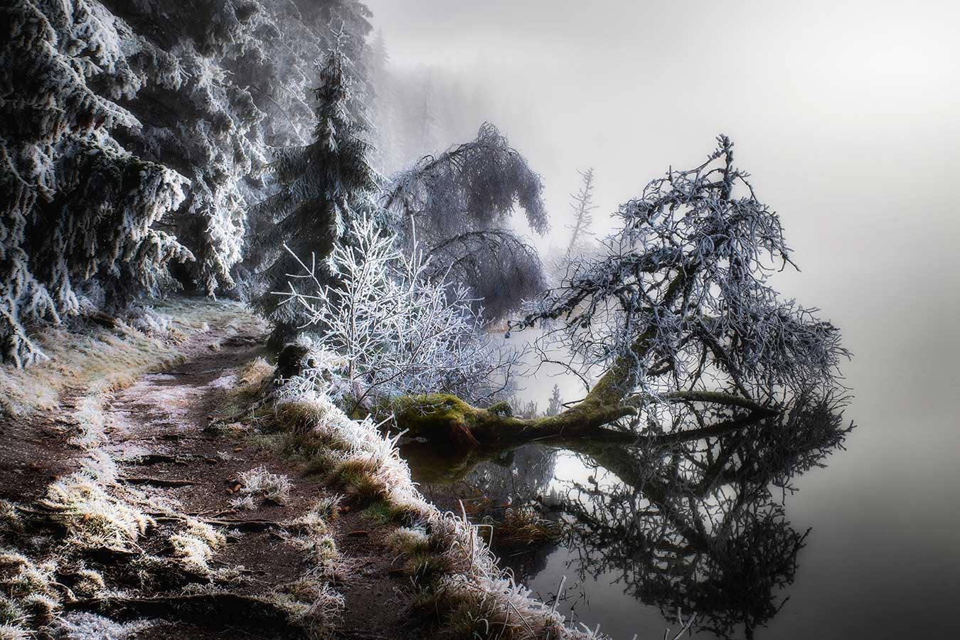 Roland Avard - Autour du lac.jpg