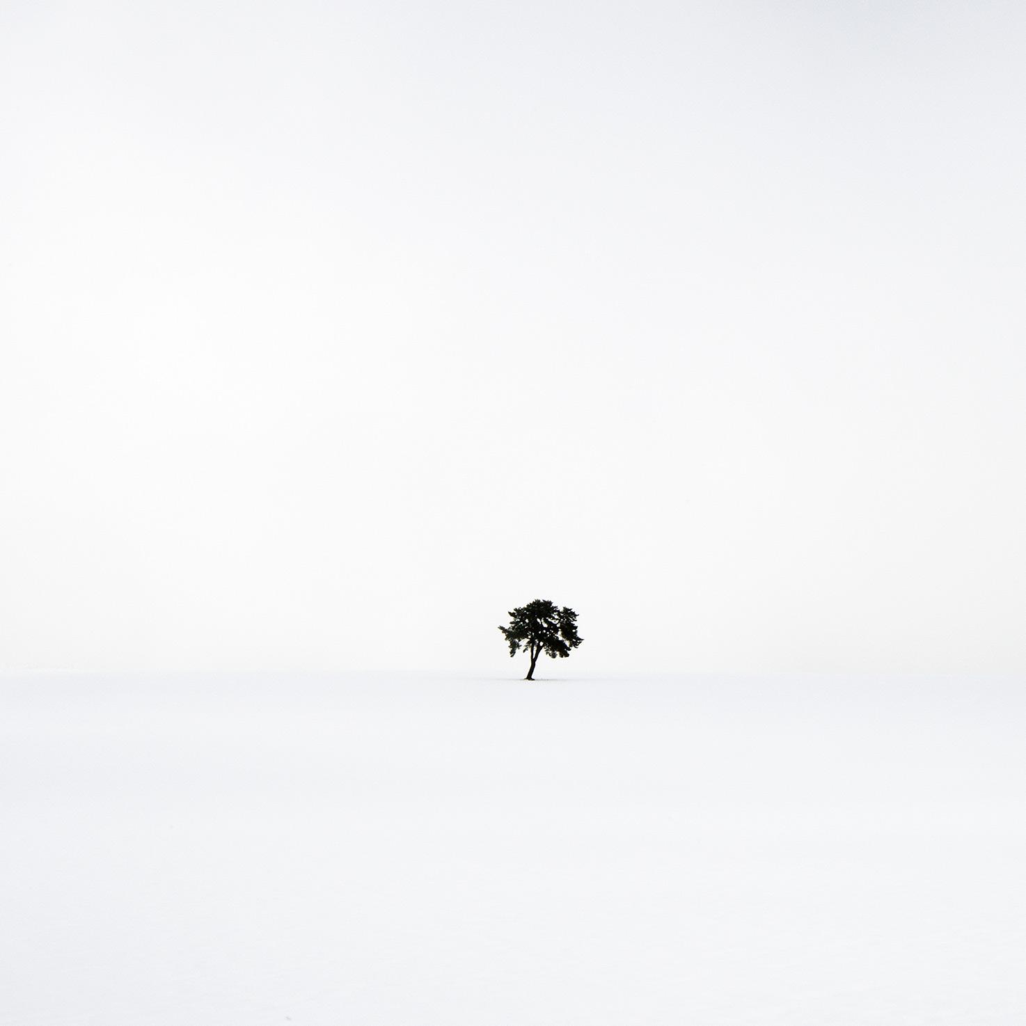 Thierry VEZON - 2.jpg