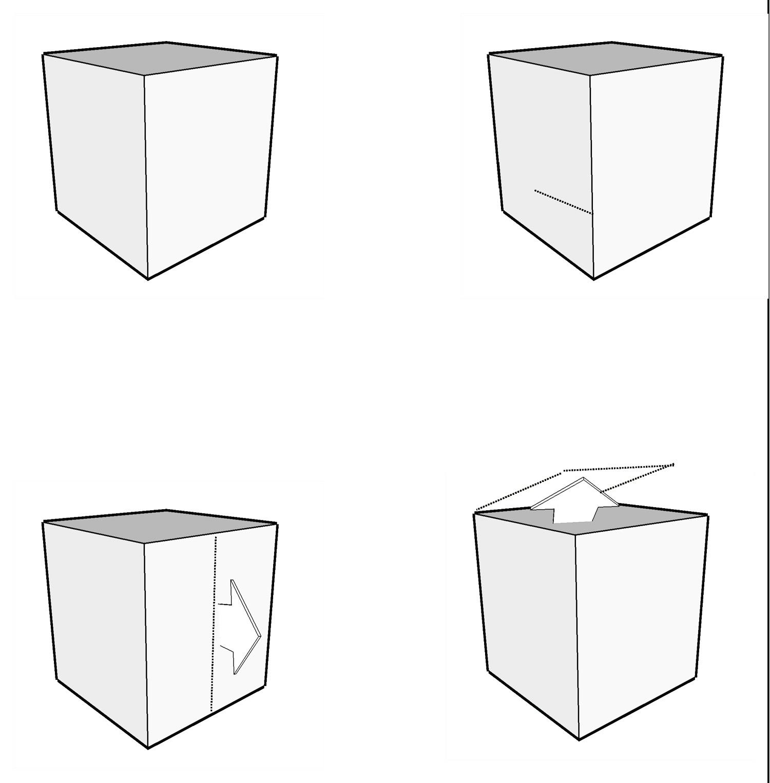 BAD-10-Form Manipulation.jpg