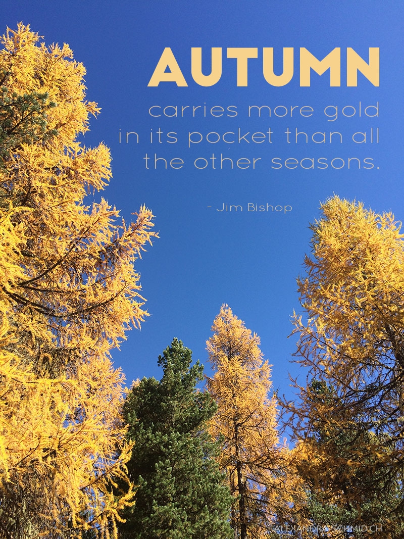 AS_AutumnQuoteOkt17.jpg