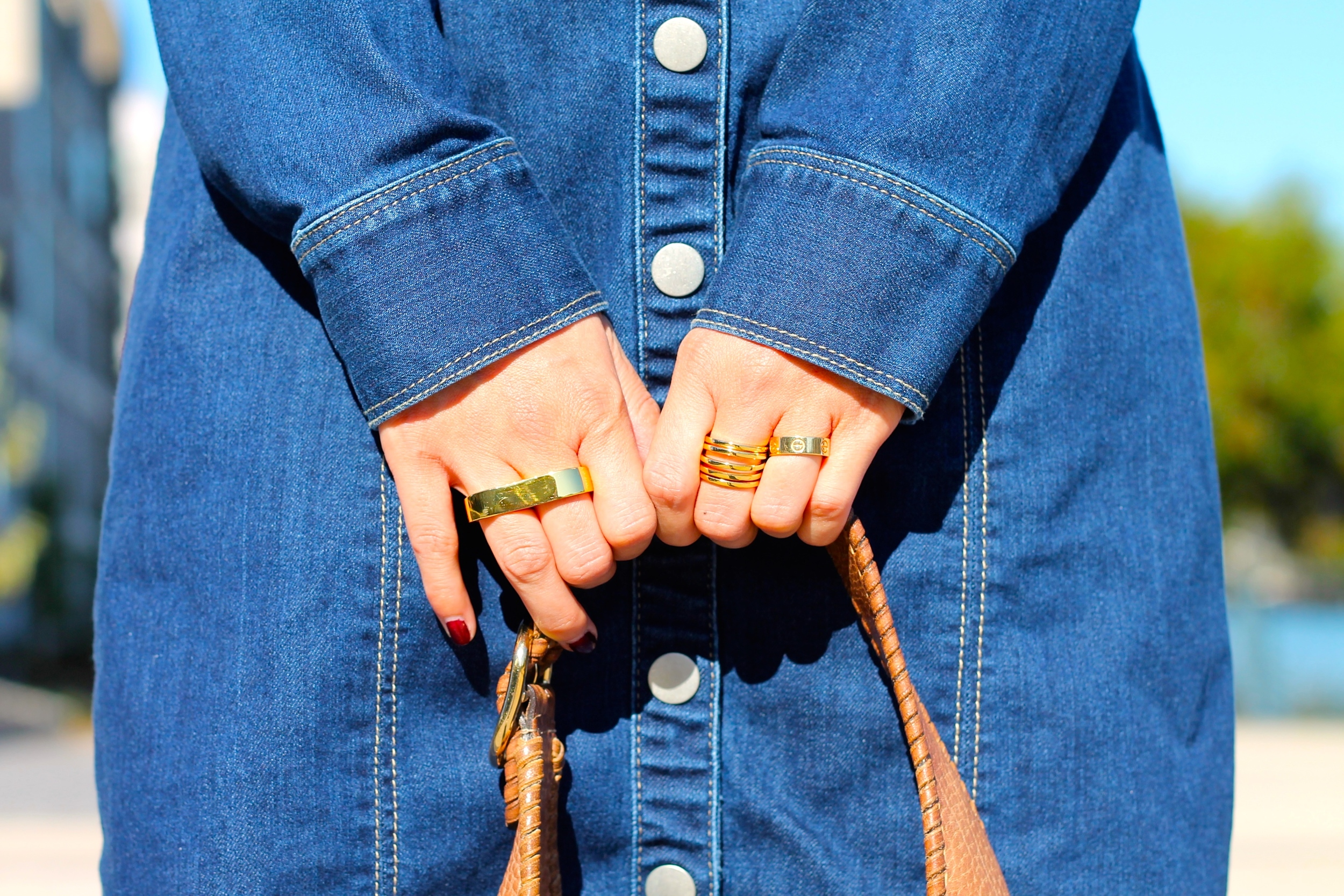 Erica Annenberg, Svelte Metals and Cartier rings