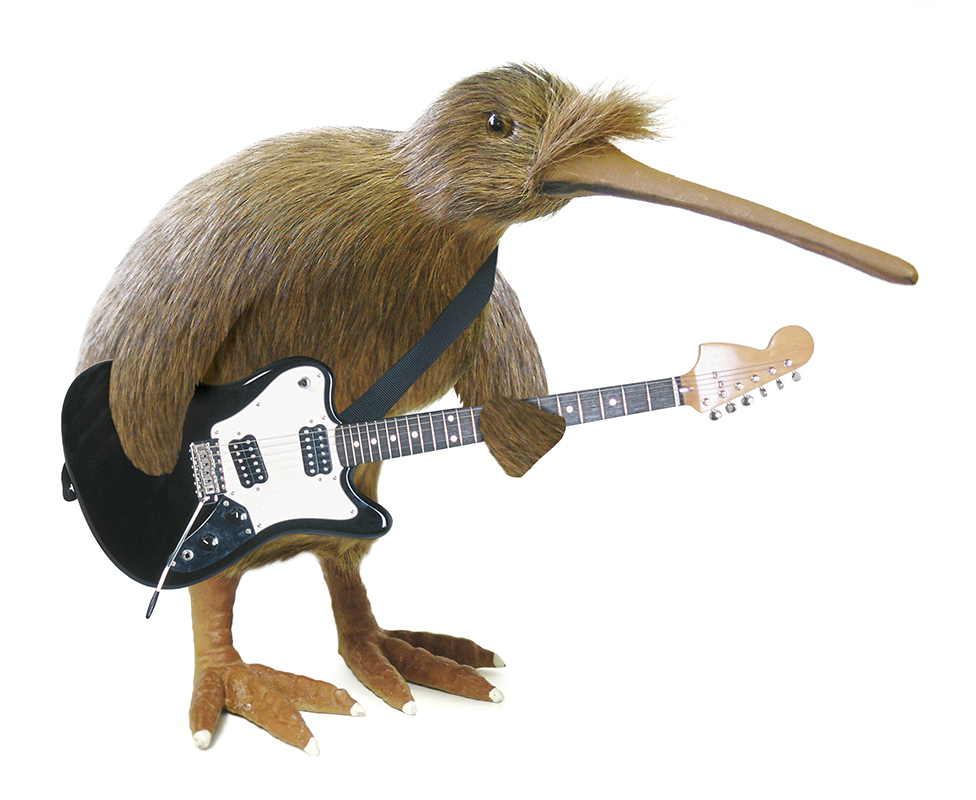 kiwi guitarist illustration.jpg