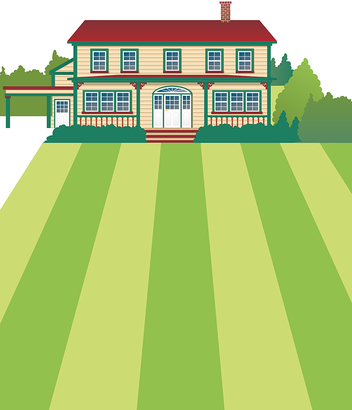 House illustration.jpg