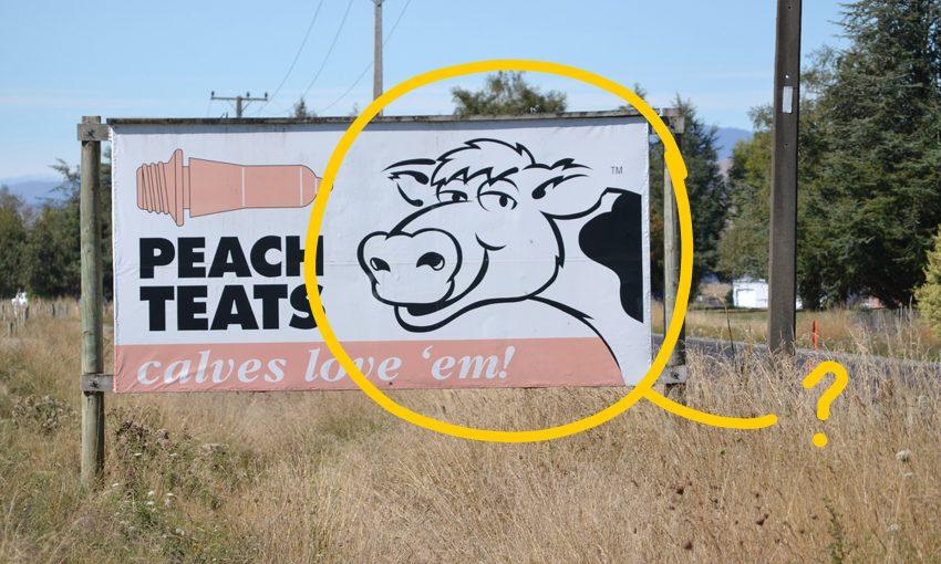 Peach-Teats-Header-850x510.jpg