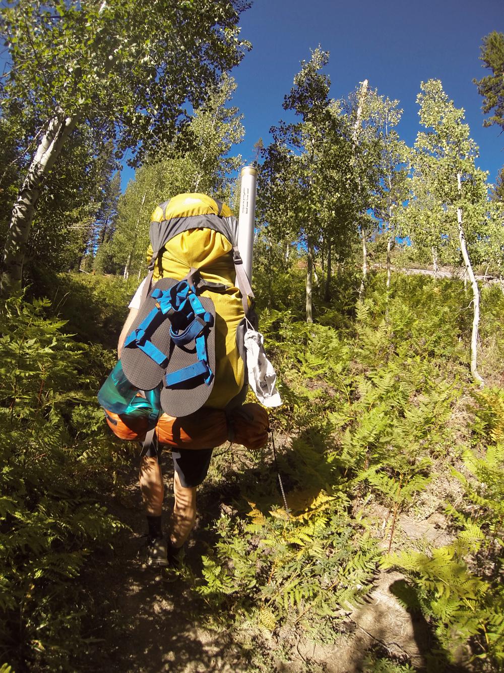 Trail1_fotochoa.jpg