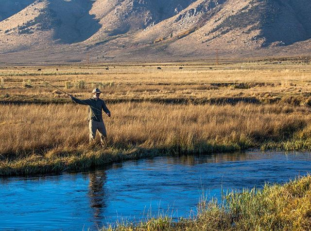 Some fresh air from a while back. What a luxury #flyfishingnation #flyfishing #easternsierras #visitmammoth