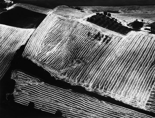 Mario Giacomelli, Metamorfosi della terra, 1980 Tirage argentique — 30 × 39,5 cm Courtesy Galerie BerthetAittouarès, Paris