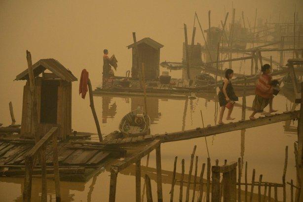 Photograph: Ardiles Rante/Greenpeace