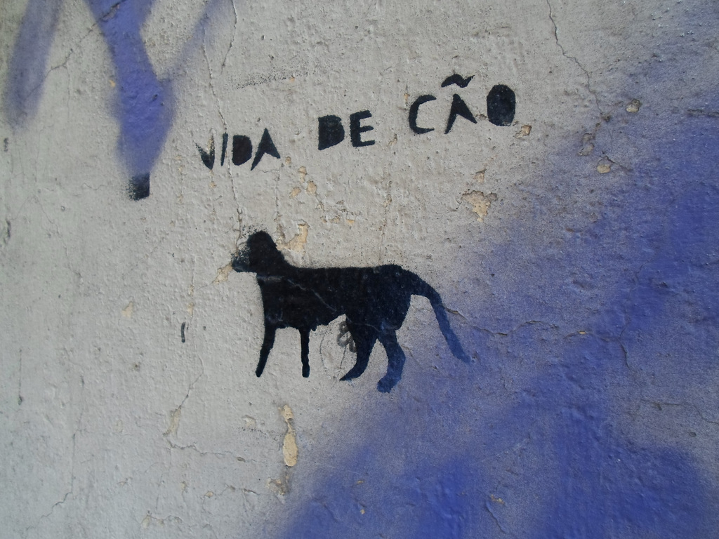 Lisbonne © Candice Nguyen