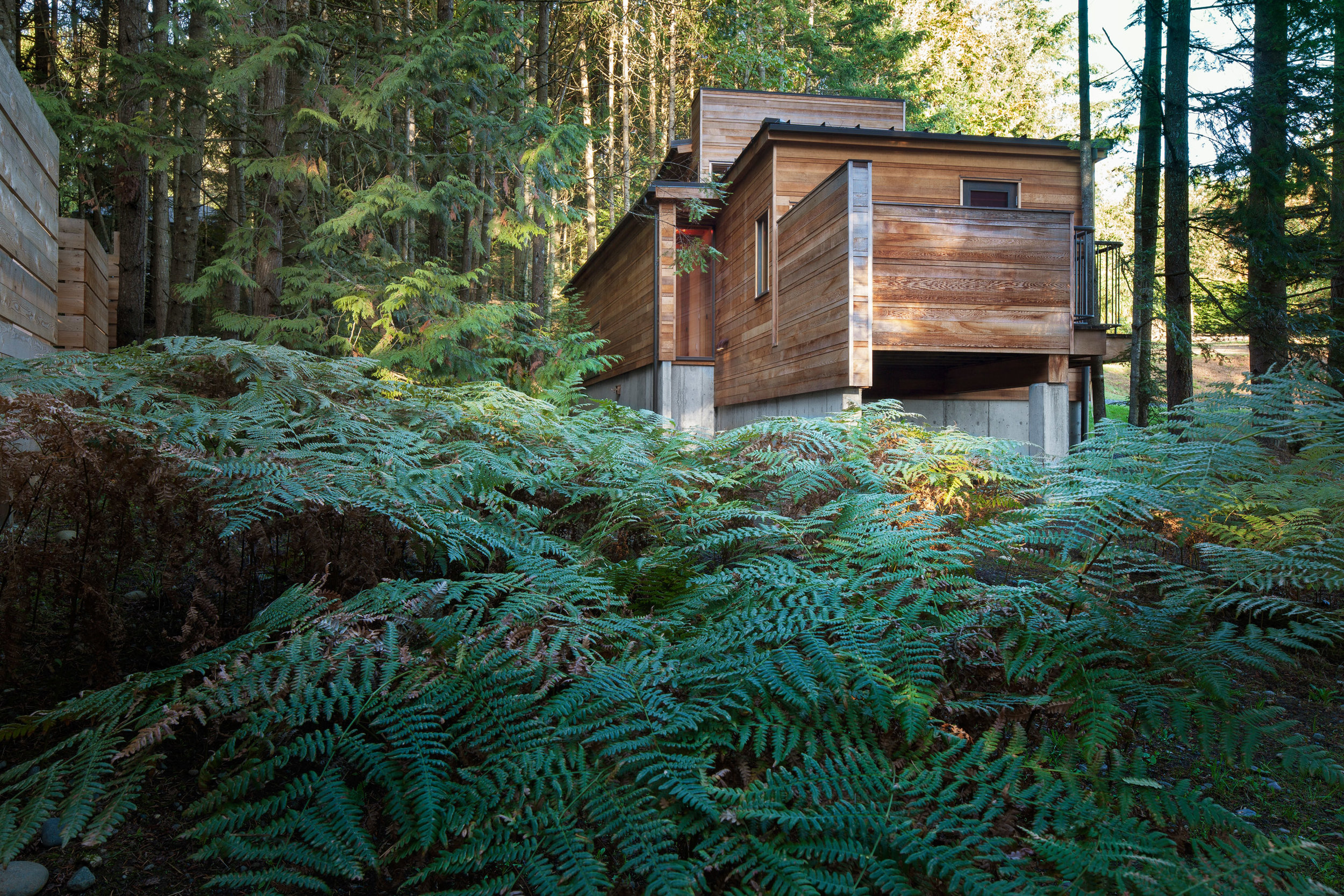 Agathom Co.,   Retraite de la forêt  , 2014, Vancouver Island, British Columbia, Canada. credit: Steven Evans