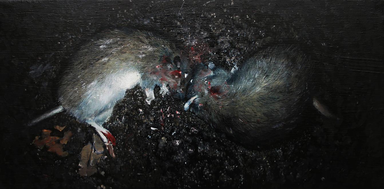 Rats morts