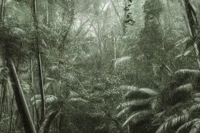 Luiz Zerbini  Lago Quadrado, 2010 —  Acrylique sur toile, 300 × 300 cm Collection Romero Pimenta, Nova Lima © Luiz Zerbini — Photo © Eduardo Ortega.