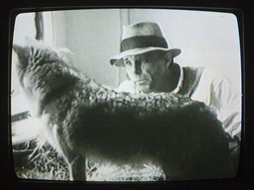 Jo Beuys et son coyotte