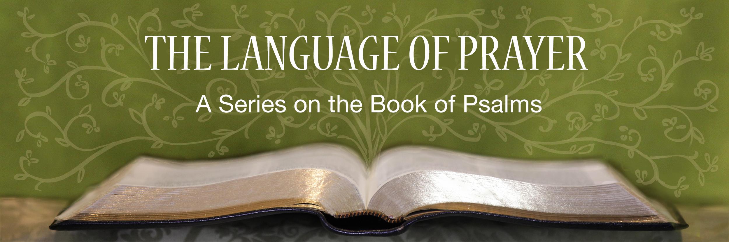 0. Psalms Series Banner.jpg