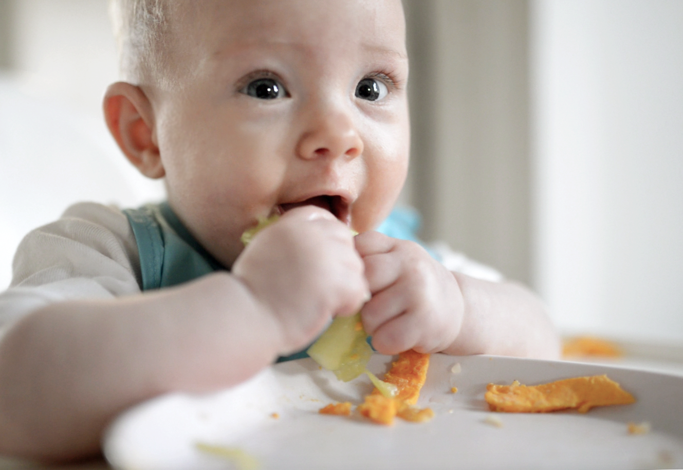 starting solids baby.png