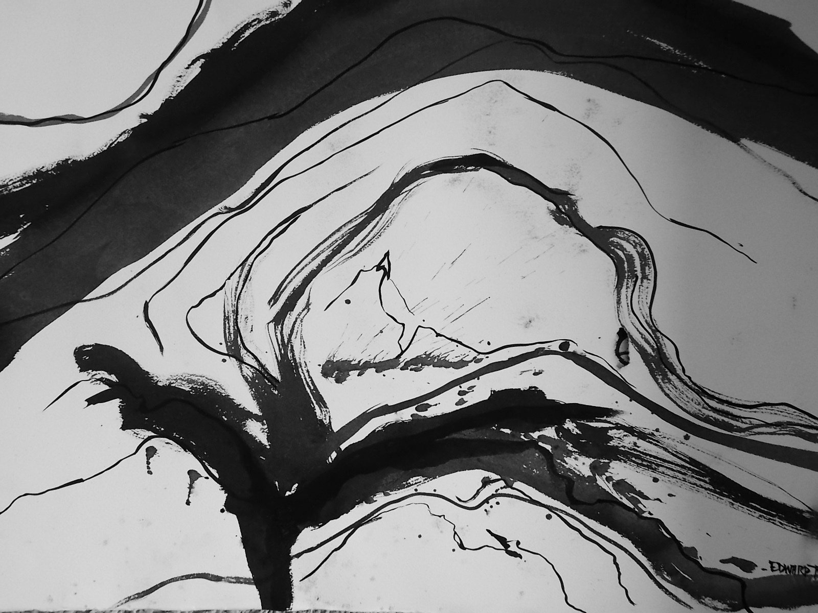 """Prostrate #3    Ink on Arches paper  22"""" x 30"""""""