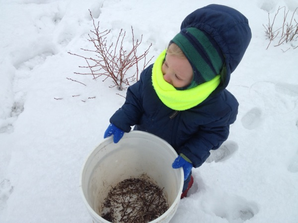 Benny holding the pruning bucket.
