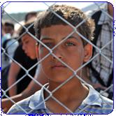 Refugee Crisis Worker